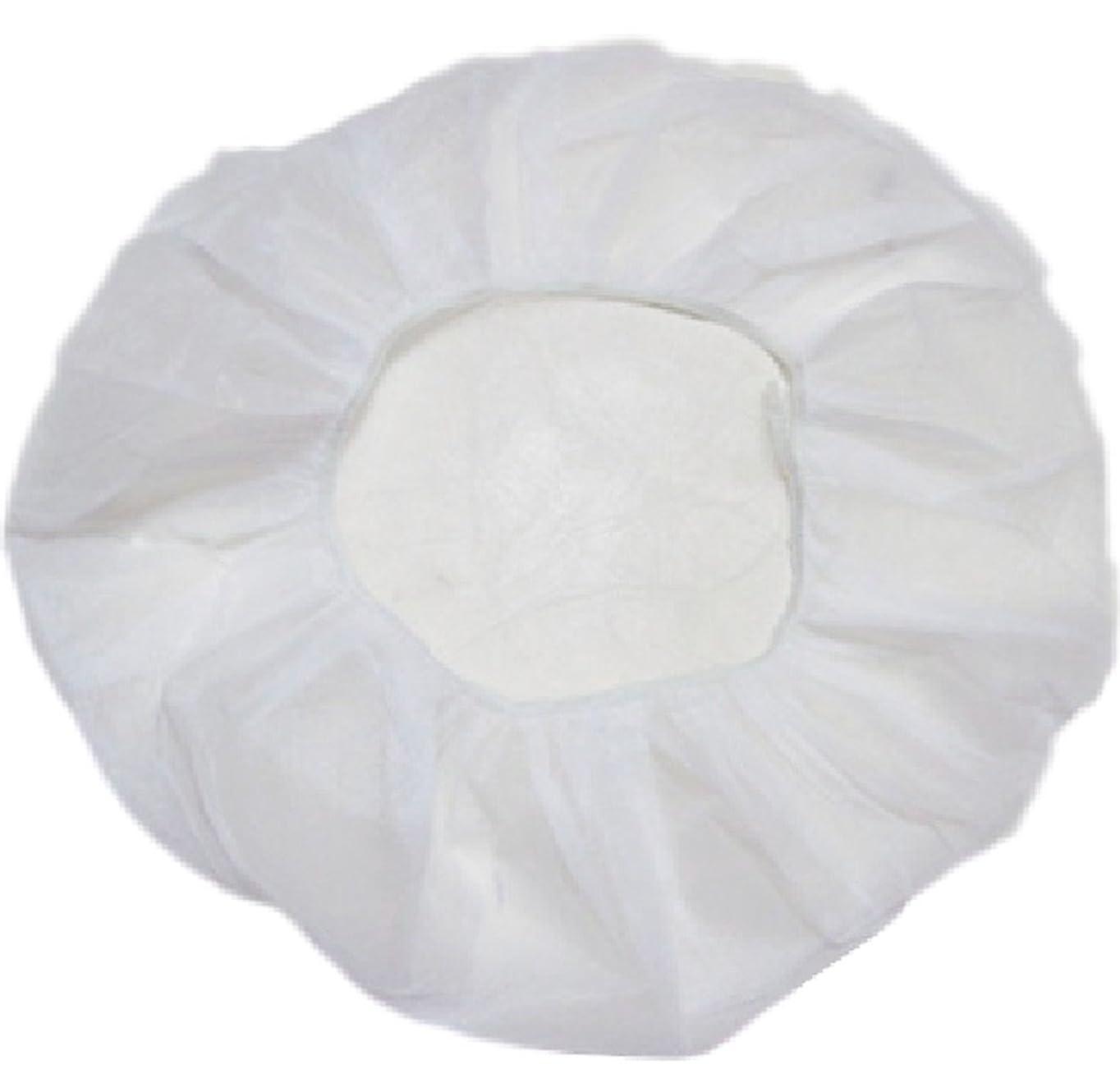 純度馬鹿城業務用 不織布 ヘアキャップ 使い捨て 衛生 食品 加工 工場 大きめ (100個, 白)