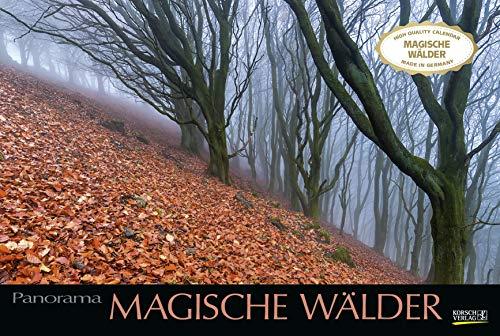 Magische Wälder 2021: Großer Foto-Wandkalender mit Bildern aus bunten Wäldern. Edler schwarzer Hintergrund. PhotoArt Panorama Querformat: 58x39 cm.