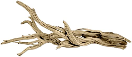 Best california driftwood for sale Reviews