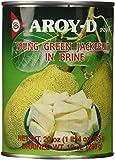 Aroy-D Young Green Jackfruit In Brine 20 oz
