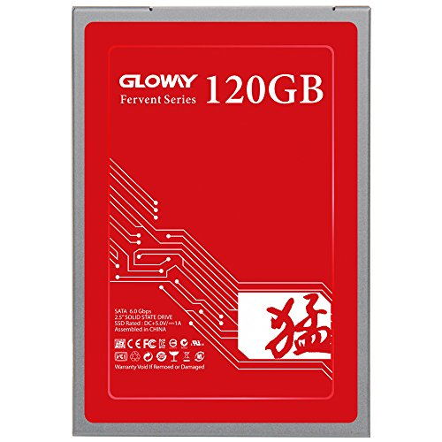 Gloway FER 240GB Solid State Drive,3D NANAD SATA 2.5 Inch Internal SSD Work with Notebook and Desktop(240GB)