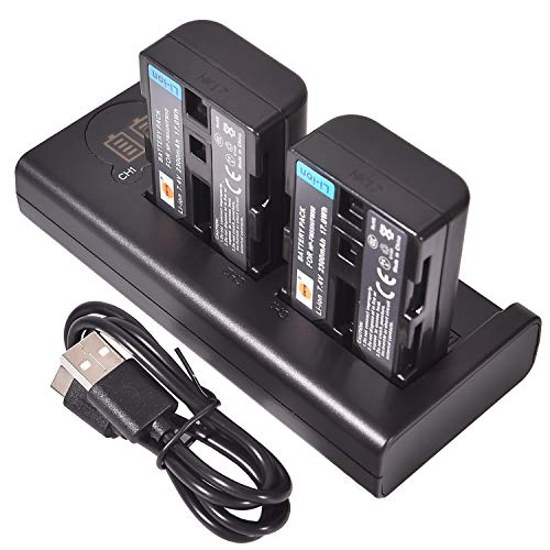 DSTE NP-FM50 Ersatzakku (2er Pack) & Smart LED Dual USB-Ladegerät Kompatibel mit Sony CCD-TRV108, CCD-TRV116, CCD-TRV118, CCD-TRV126, CCD-TRV128, CCD-CCD-TRV138, CCD-TRV208, CCD-TRV308
