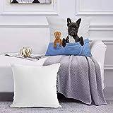 Ccstyle Funda de Cojín Funda de Almohada del Hogar Perro Bulldog francés con Dolor de Cabeza y Resaca durmiendo en la Cama con Osito de peluc Square Soft and Cozy Pillow Covers,