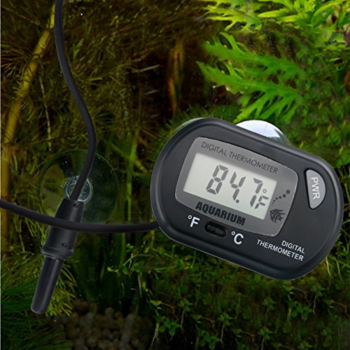 The 11 Best Aquarium Thermometers Reviews & Buying Guide for