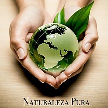 Naturaleza Pura - Sonidos Relajantes de la Naturaleza con Musica New Age Calma y Tranquila para Paz Interior