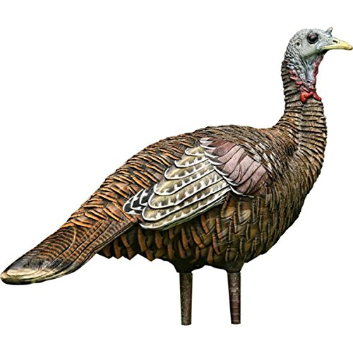 Avian-X Lookout Hen Turkey Decoy, Lifelike Collapsible Decoy