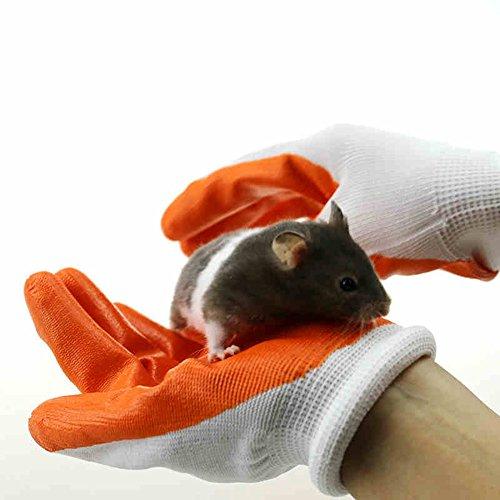 OMEM Schutz-Handschuhe zu vermeiden, die Hände Beißen von Hamster (1 Paar)