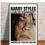 A&D Neue Harry Styles Tour Rockmusik Star Poster Und Drucke