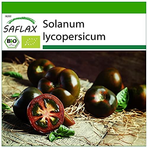 SAFLAX - Ecológico - Tomate - cherry negro - 10 semillas - Solanum lycopersicum