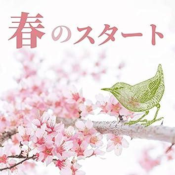 春のスタート;癒し音楽・鳥の声・自然の音