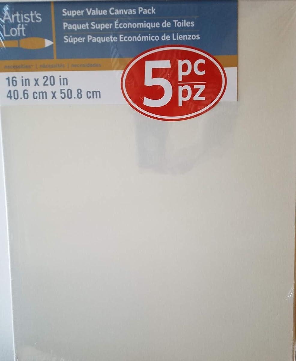 Artist's Loft Super Value 5 Pc Pack 16