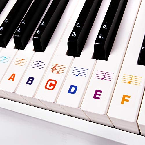 Top 10 Best teaching piano keyboard Reviews