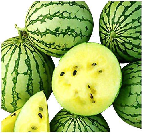 Gelbe Ananas-Melone -Wassermelone- 10 Samen (Gelbfleischig und Zuckersüß)