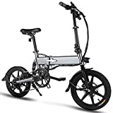 Best electric bicycle - FIIDO D2S Folding EBike, 250W Aluminum Electric Bicycle Review