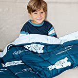 Life Tree Kids Weighted Blanket 5 Pounds   Quality Sensory Comforter for Toddler 5LB   Calming Blue for Children