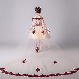 GFDGG コスチュームドレス女の子プリンセスフラワーページェントパーティードレス女の子プリンセスドレスwendingドレス (色 : C, サイズ : 110cm)