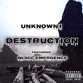 Destruction (feat. Blacc Emergence)