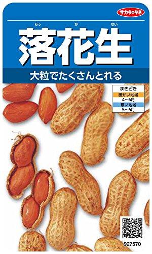 『サカタのタネ 実咲野菜7570 落花生 00927570』の1枚目の画像