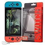 Orzly - Proteggi schermo per Nintendo Switch – Pellicola proteggi schermo in vetro temperato – Confezione da 2 per lo schermo da 6,2 pollici della Nintendo Switch