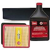 Toro Super Recycler (SR4) OHV Engine (Serial Range #313000001 & UP) Tune-up Kit