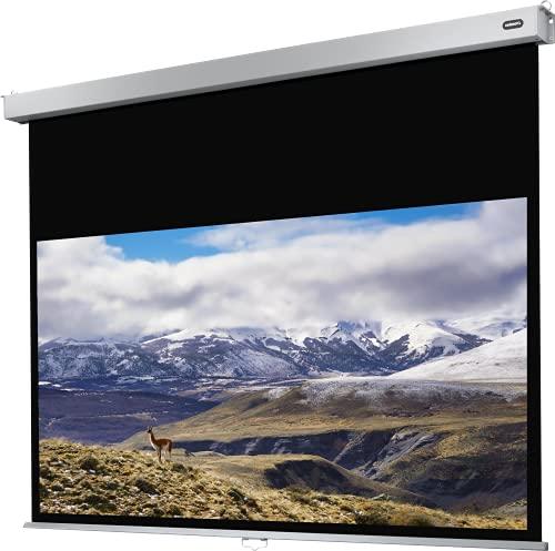 celexon manuell ausziehbare Heimkino- und Business-Rollo-Beamer-Leinwand 4K und Full-HD mit Slow-Return Professional Plus - 300 x 169 cm - 16:9