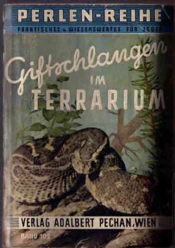Giftschlangen im Terrarium