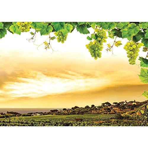 Fototapete 368x254 cm PREMIUM Wand Foto Tapete Wand Bild Papiertapete - Landschaft Tapete Landschaft Weinberge Weintrauben Blätter Natur Wolken grün - no. 1498