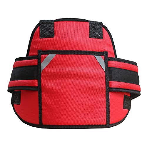 Mauel Kinder Sicherheitsgurt, Sicherheitsgurte Baby Fallschutz,Einstellbare Länge,Geeignet für Kinder zwischen 2 und 12 Jahren,Rot