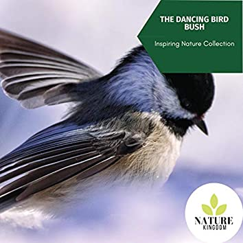The Dancing Bird Bush - Inspiring Nature Collection