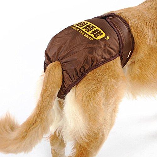 UEETEK Pañales de Perro Reutilizables Pantalones Sanitarios Ropa Interior de higiene con Las Bandas del Vientre Ropa Interior de Perro Underpant para el Perro Perrito Grande Medio Grande,L(marrón)