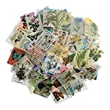 366 hojas de papel para álbumes de recortes no repetitivo, pegatinas para álbumes de recortes...