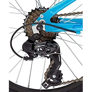 "Diamondback Bicycles Octane 20 Youth 20"" Wheel Mountain Bike, Blue"
