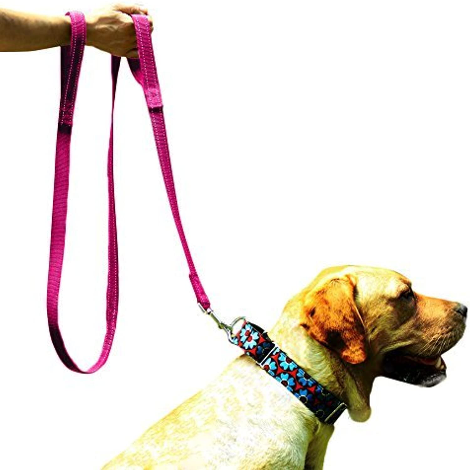 EXPAWLORER Double Handles Dog Training Leash 6 FT, Heavy Duty Padded Handle Lead for Traffic Safety Control, Perfect for Medium to Large Dog, Pink