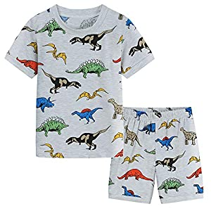 POBIDOBY Toddler Boys Cotton T-Shirt and Shorts Set Short Sleeve Cartoon Little boy Clothing Outfits