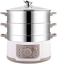 DYB Cuiseur Vapeur électrique Multifonctionnel en Acier Inoxydable de qualité Alimentaire Domestique Cuiseur Vapeur Grande...