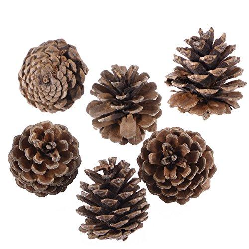 piatti decorativi natale appendere da pigne decorazioni alberi per-Amosfun 6pcs 5cm Pigne di Natale con legno di corda Pigna decorazione dell'albero di Natale Artigianato per la casa ornamento