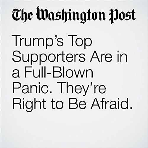 Trump's Top Supporters Are in a Full-Blown Panic. They're Right to Be Afraid. copertina