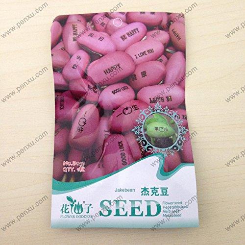 Grande promotion . 150pcs chinois Blueberry Graines de fruits de semence, Germination de graines + 95% Noir, Charlotte aux Fraises