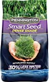 Best Bermuda Grass Seeds - Pennington Smart Seed Dense Shade Grass Seed, 7 Review