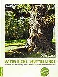 Vater Eiche, Mutter Linde: Bäume als Seelenbegleiter, Kraftspender und Verbündete - Alfred Zenz