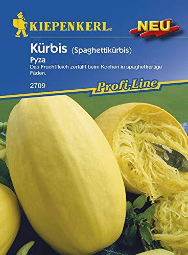 Kürbis (Spaghettikürbis) Pyza, Inhalt reicht für ca. 8 Pflanzen, Fruchtfleisch zerfällt beim Kochen in spaghettiähnliche Fasern