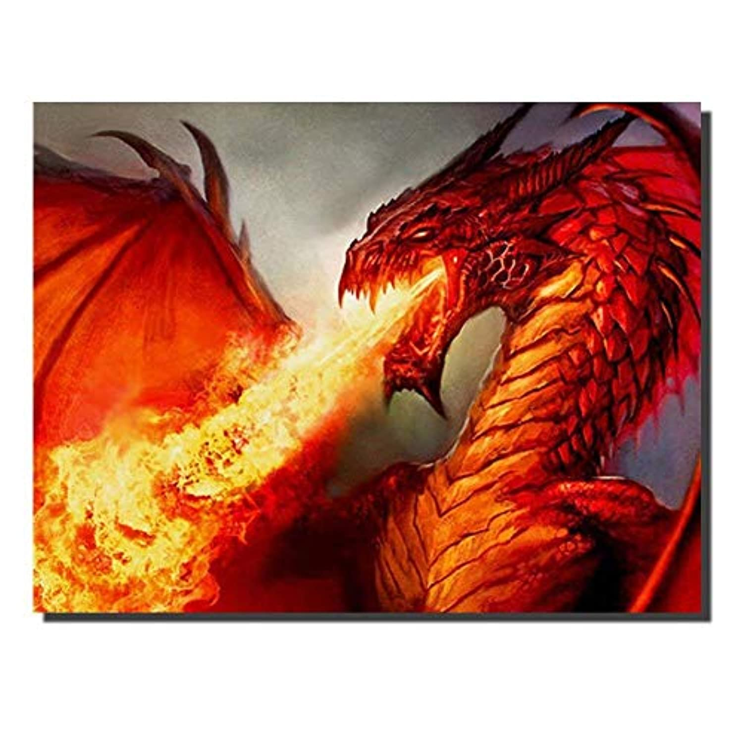 Diamond Dotz Kits Diamond Painting by Number Kits for Adults Dragon 30 x 40 cm