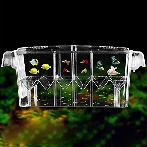 Paridera para Peces Doble Capa Desove del Acuario Plástico Transparente Aislamiento Tanque De Cría Caja Cubadora De Cría para Criadero De Peces Pequeños/Gambas