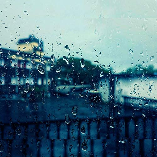 Rain Sounds & The Rain Library