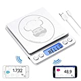 Super Egg Scale - Egg Sizing, Sizes, Grading, Egg Weight Analysis, reflex 3000g / 0.1g Digital Scale Grams and Ounces USB Rechargeable, Portable, Accurate, Metal Stainless Steel Surface