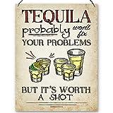 Dorothy Spring Tequila probabilmente non Fix Your Problems But It's Worth A Shot, targa in metallo, dimensioni 15 x 20 cm