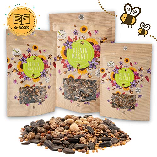 500g Blumenwiese Samen für eine bunte Bienenweide - Farbenfrohe & nektarreiche Wildblumensamen Mischung für Bienen & Schmetterlinge (inkl. GRATIS eBook)