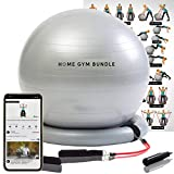 Home Gym Bundle Exercise Ball with 15lb Resistance Bands and Stability Base - Full Body Fitness Workout Equipment Fitball - Portable 65CM Yoga Ball Chair for Strength Training, Upper and Lower Toning