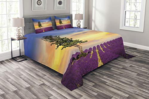 ABAKUHAUS Lavendel Tagesdecke Set, Französisch Land, Set mit Kissenbezügen Waschbar, für Doppelbetten 264 x 220 cm, Mehrfarbig