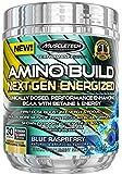 Muscletech Performance Series Amino Build Next Gen Energized Blue Raspberry - 270 gr